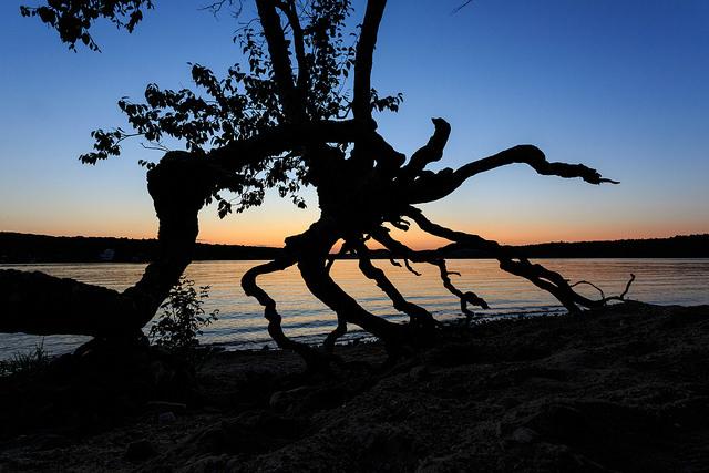 Beach Pond Sun Set